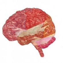 That brain looks tasty.